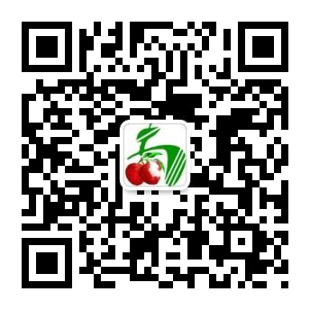 1527780423925469.jpg
